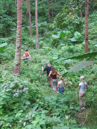 Greens hills along the trek from Barangay Ligaya to Mount Panay.
