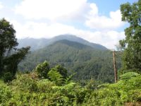 Sierra Madre, the long easterly mountain chain on Luzon, as seen from the Cabanatuan to Baler road.